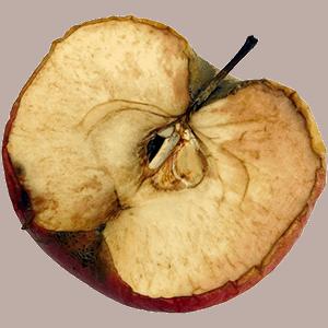 תפוח חצוי מחומצן